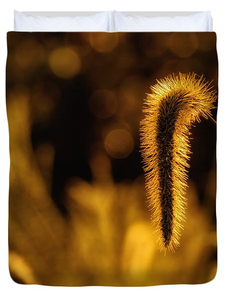Grass In Golden Light Duvet Cover