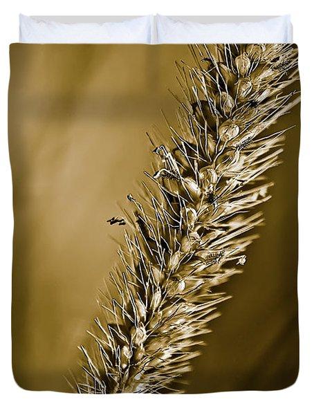 Grass Seedhead Duvet Cover by  Onyonet  Photo Studios