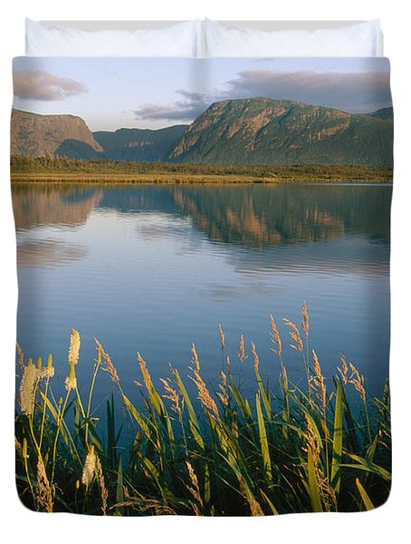 Grasses Grow Along The Edge Of A Lake Duvet Cover