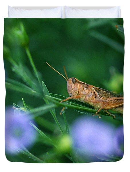 Grasshopper Duvet Cover by Mike Grandmailson