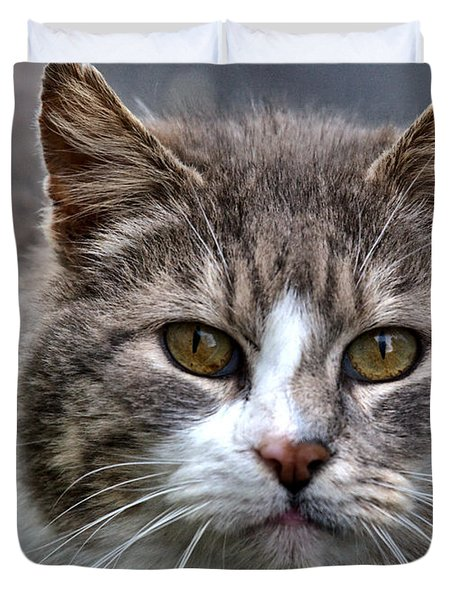 Duvet Cover featuring the photograph Gray Tabby Tux Cat by Chriss Pagani