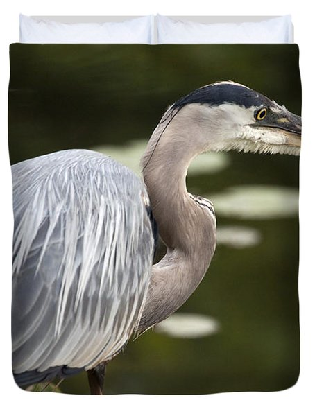 Duvet Cover featuring the photograph Great Blue Heron  by Jeannette Hunt