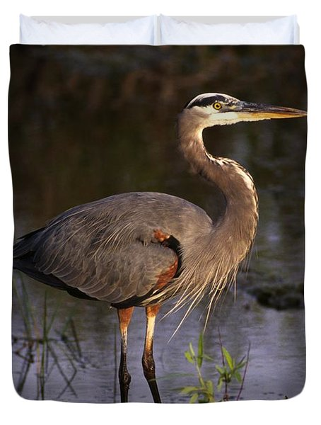 Great Blue Heron Duvet Cover by Natural Selection Ralph Curtin