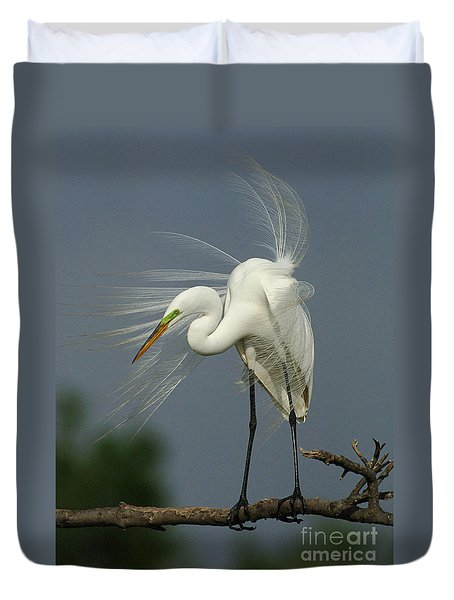 Great Egret Duvet Cover by Bob Christopher