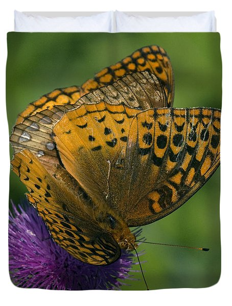 Great Spangled Fritillaries On Thistle Din108 Duvet Cover by Gerry Gantt