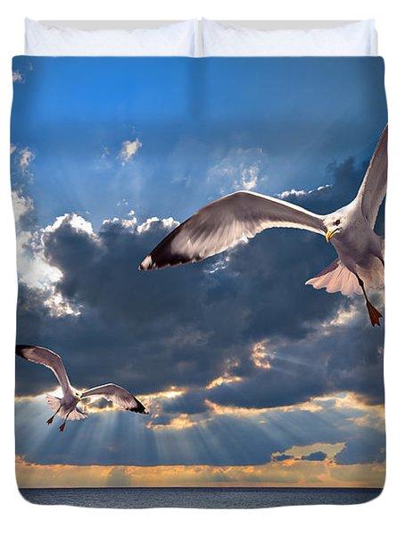 Greek Gulls With Sunbeams Duvet Cover