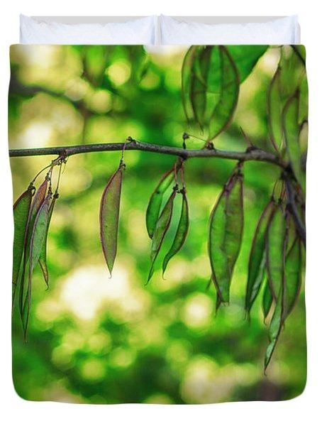Green Redbud Seed Pods Duvet Cover