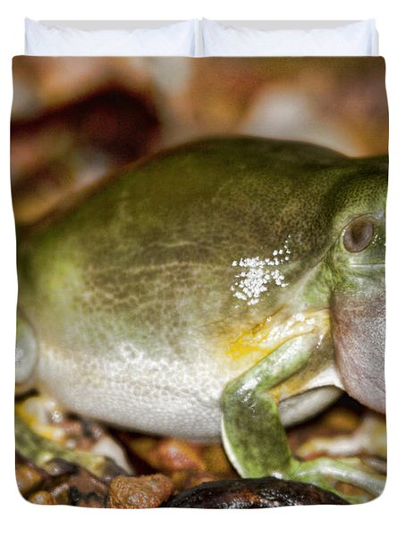 Green Tree Frog Duvet Cover by Douglas Barnard