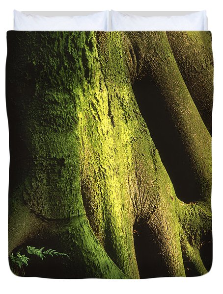 Green Trunk Duvet Cover