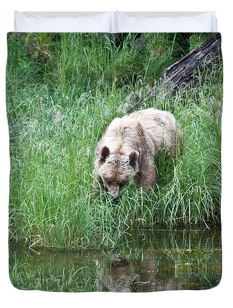 Grizzly Bear And Reflection On Prince Rupert Island Canada 2209 Duvet Cover