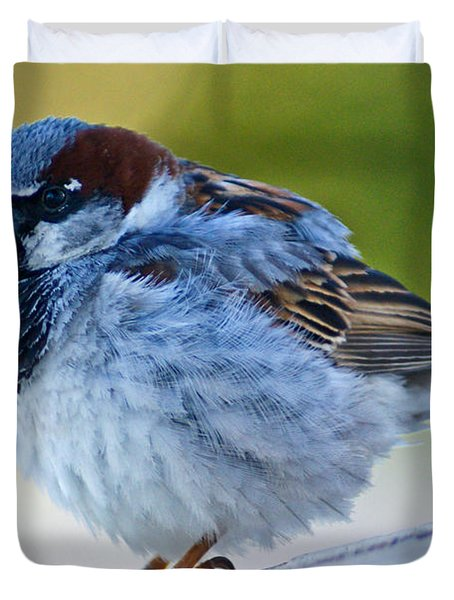 Duvet Cover featuring the photograph Guard Bird by Colleen Coccia