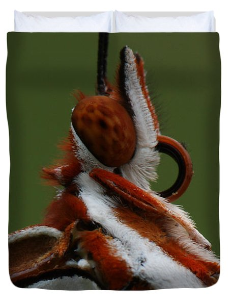 Duvet Cover featuring the photograph Gulf Fritillary Butterfly Portrait by Daniel Reed
