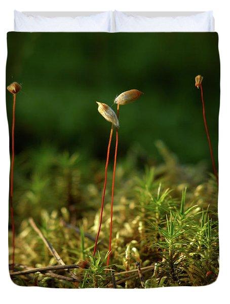 Haircap Moss Duvet Cover by Jouko Lehto