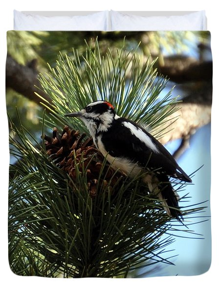 Hairy Woodpecker On Pine Cone Duvet Cover