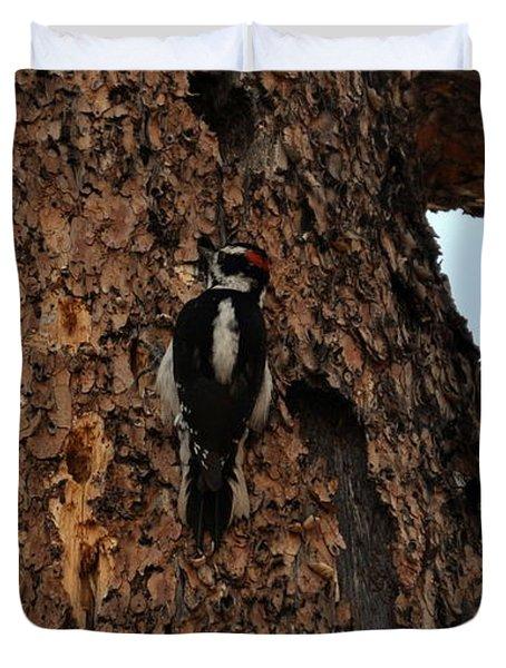 Hairy Woodpecker On Pine Tree Duvet Cover
