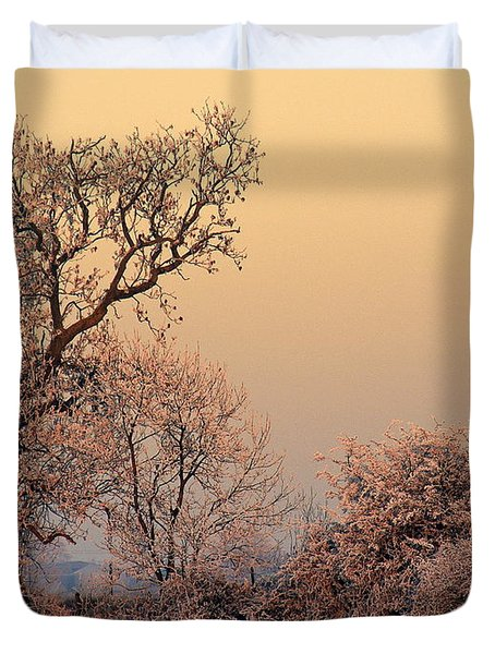 Frost 2 Duvet Cover by Linsey Williams