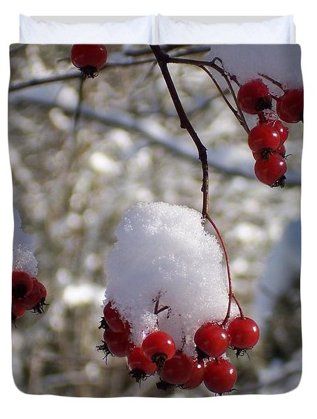 Hawthorn Berries In The Snow Duvet Cover by Peter Mooyman