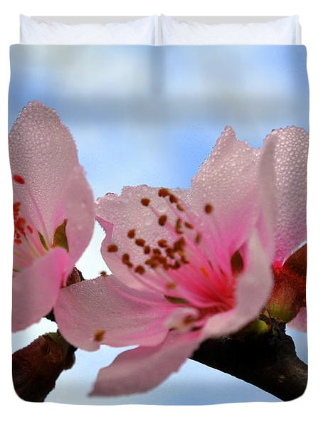 Hawthorne Bloom Duvet Cover by Marty Koch