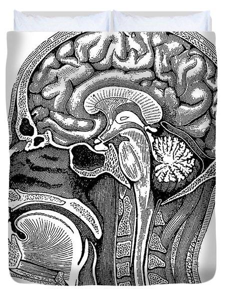 Head And Brain Anatomy Duvet Cover