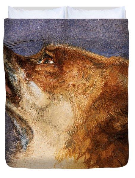 Head Of A Fox Duvet Cover by John Frederick Lewis
