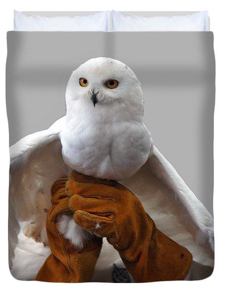 Hedwig Harry Potters Pet Duvet Cover by LeeAnn McLaneGoetz McLaneGoetzStudioLLCcom