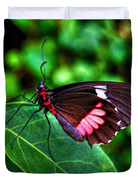 Hello Flutterby Duvet Cover by Randy Aveille