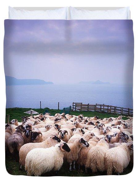 Herding Sheep, Inishtooskert, Blasket Duvet Cover