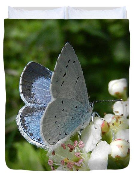 Holly Blue Duvet Cover