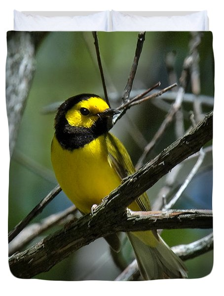 Duvet Cover featuring the photograph Hooded Warbler Dsb166  by Gerry Gantt