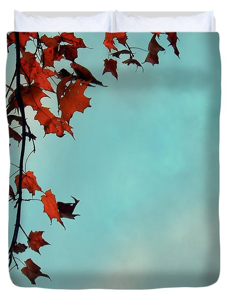 Hot And Cold Duvet Cover by Aimelle