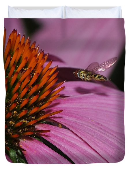 Hoverfly Hovering Over Cornflower Duvet Cover