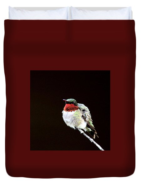 Hummingbird - Ruffled Feathers Duvet Cover