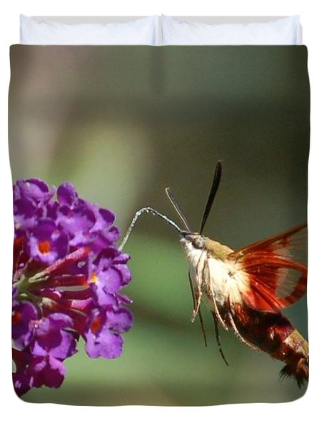 Hummingbird Moth Duvet Cover
