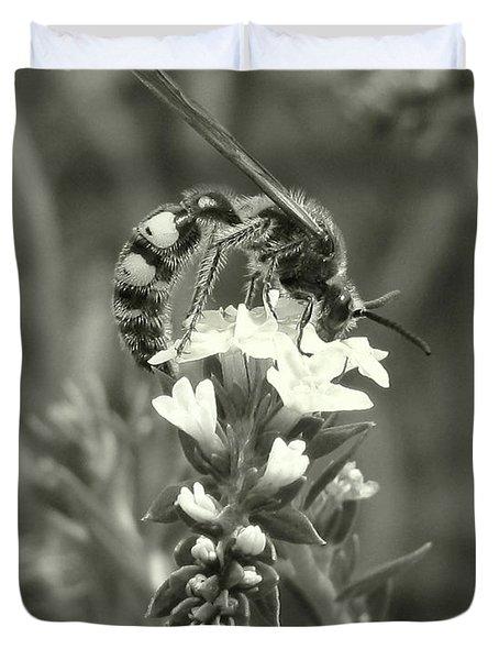 Hunter Wasp On Heliotrope Duvet Cover