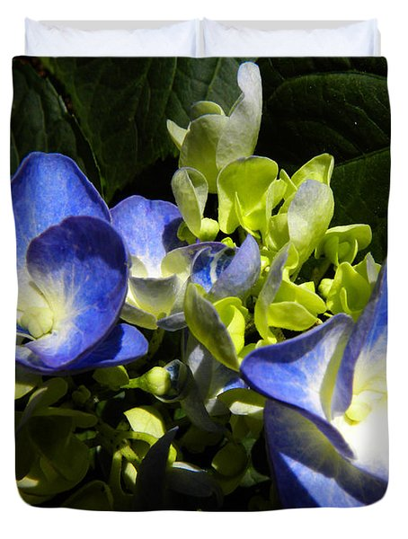 Hydrangea Duo Duvet Cover by Sandi OReilly