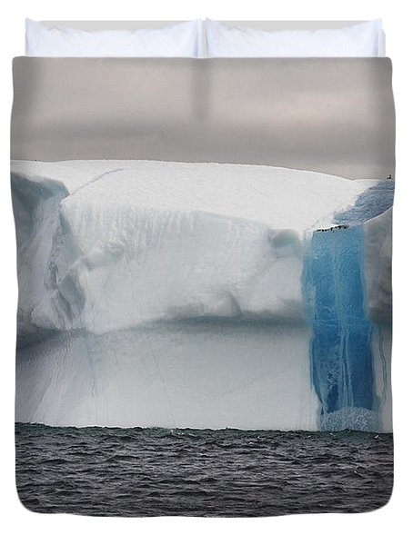 Duvet Cover featuring the photograph Iceberg by Eunice Gibb