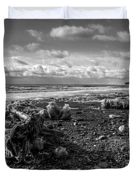 Duvet Cover featuring the photograph Icy Alaskan Beach by Michele Cornelius