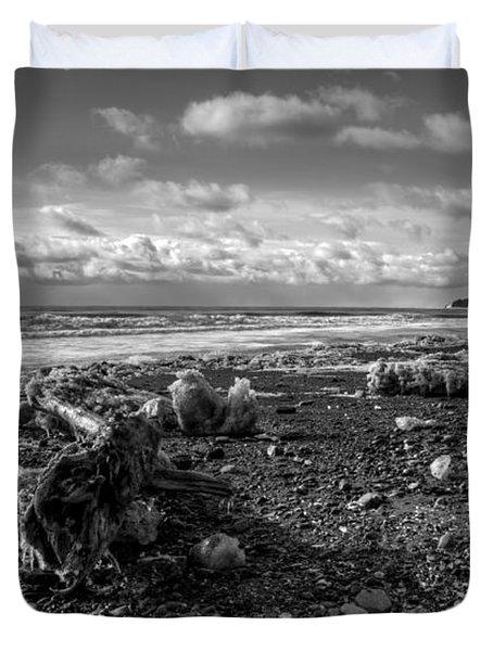 Icy Alaskan Beach Duvet Cover by Michele Cornelius