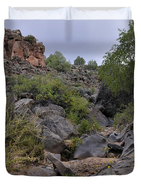 Duvet Cover featuring the photograph In The Arroyo   by Ron Cline
