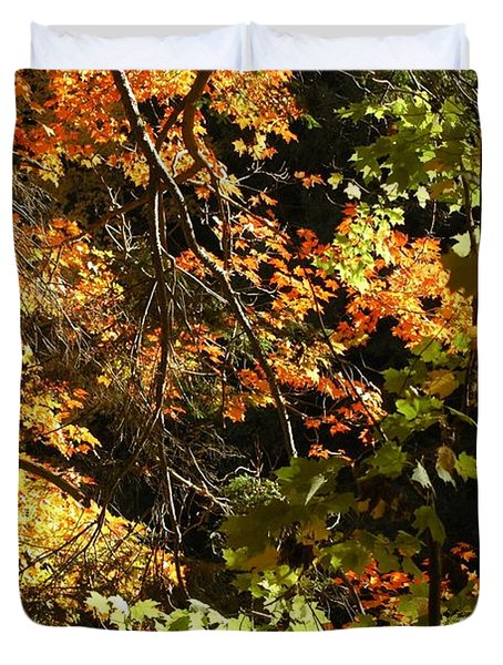 In The Woods Duvet Cover by Kathleen Struckle