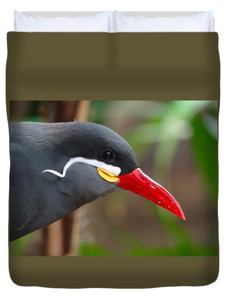 Duvet Cover featuring the photograph Inca Tern by Julia Wilcox