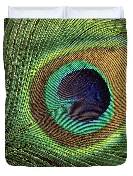 Indian Peafowl Pavo Cristatus Display Duvet Cover by Gerry Ellis