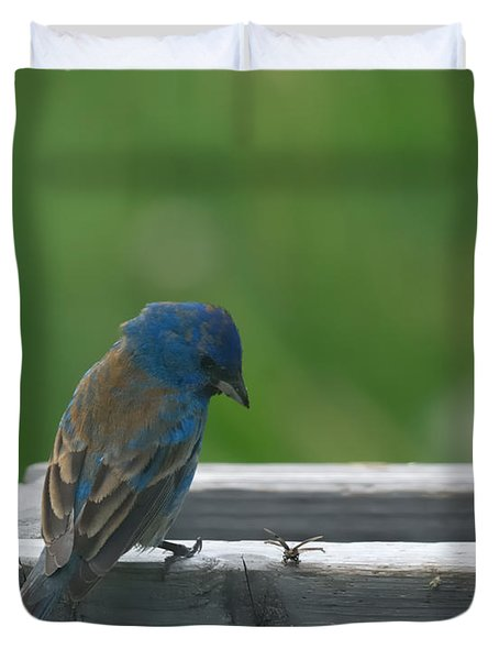 Indigo Bunting And Friend Duvet Cover