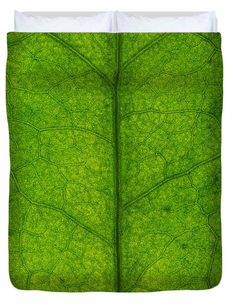 Ivy Leaf Duvet Cover by Steve Gadomski
