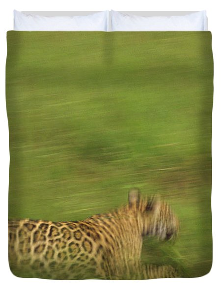 Jaguar Panthera Onca Running Duvet Cover by Claus Meyer