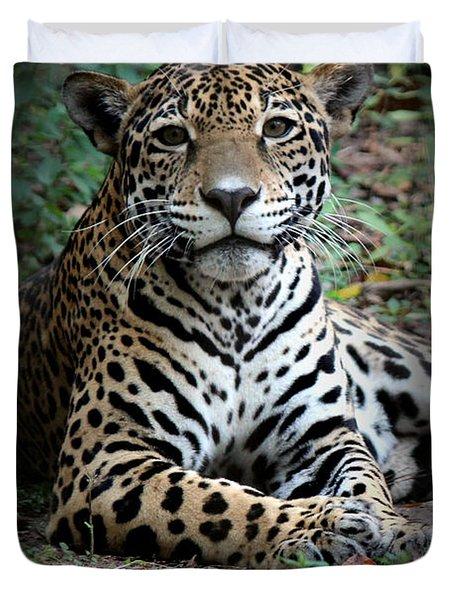 Duvet Cover featuring the photograph Jaguar Portrait by Kathy  White