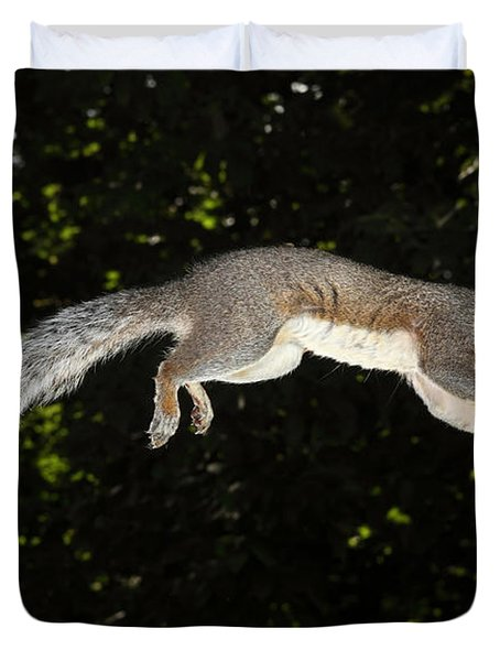 Jumping Gray Squirrel Duvet Cover by Ted Kinsman