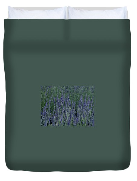 Just Lavender Duvet Cover by Manuela Constantin