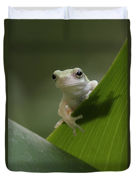 Duvet Cover featuring the photograph Juvenile Grey Treefrog by Daniel Reed