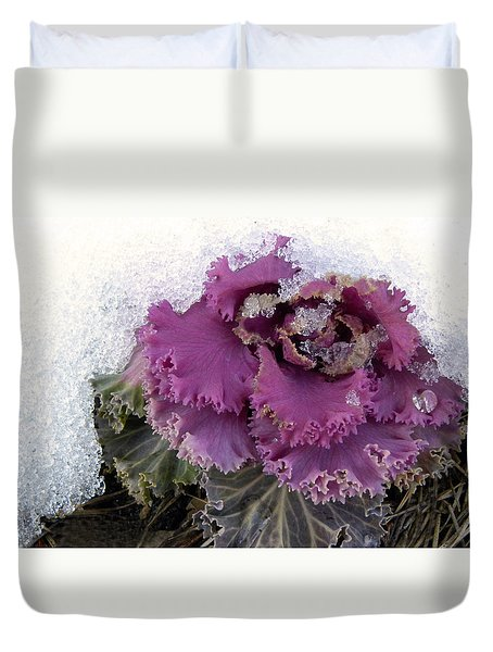 Kale Plant In Snow Duvet Cover by Sandi OReilly